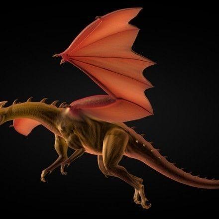 Game Ready Dragon3D model