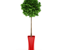 3d potted tree