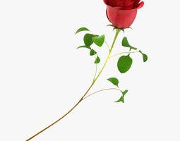 3d model rose flower red