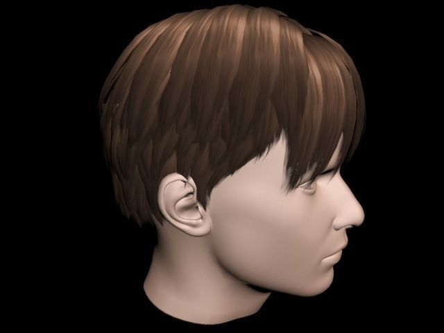 haircut no 3 short brown hair for man 3d model haircut model for
