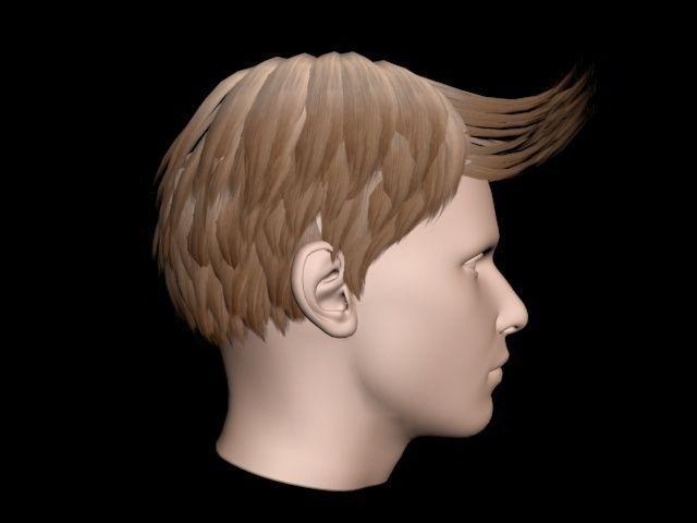 Short Brown Hair For Man 3D Model .max .obj