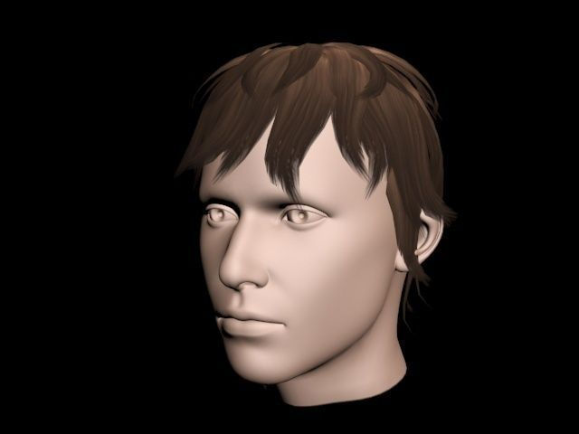 Haircut No 5  Short Dark Brown Hair for Man 3D Model .max .obj .fbx
