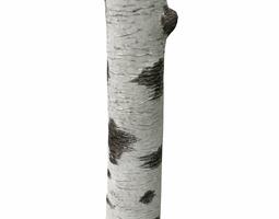 3d model birch tree trunk