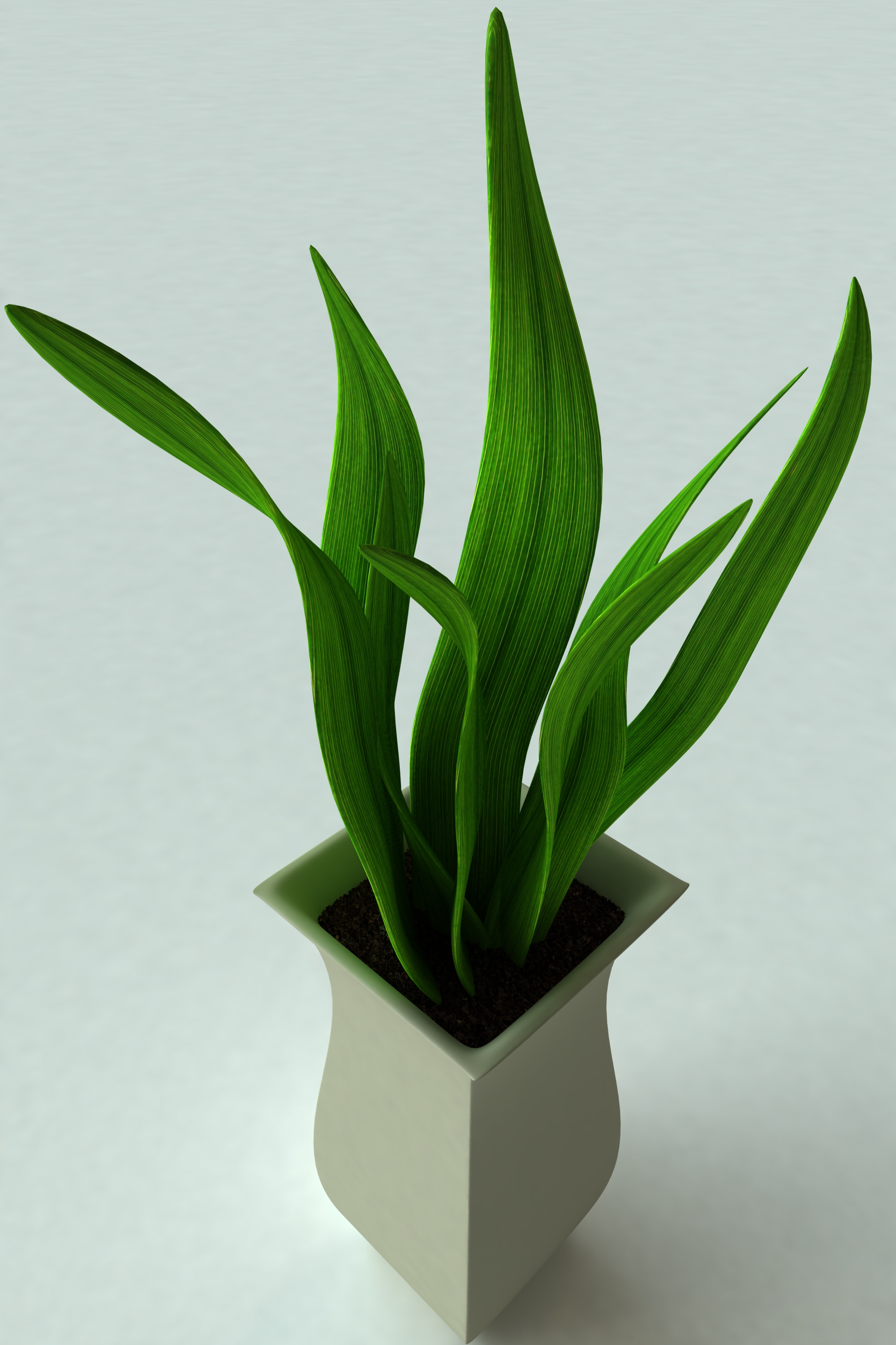 Potted Plants And The Necessary Spring Care: Potted Plant-2 3D Model MAX