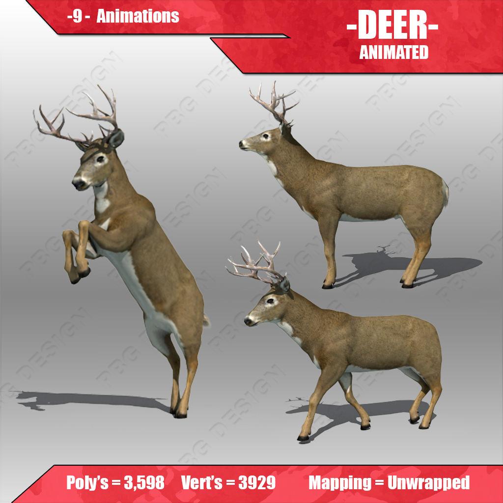 Deer Animated