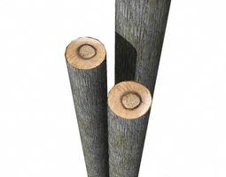 3d model log