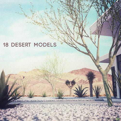 18 high-res desert cg plant and tree models 3d model  1