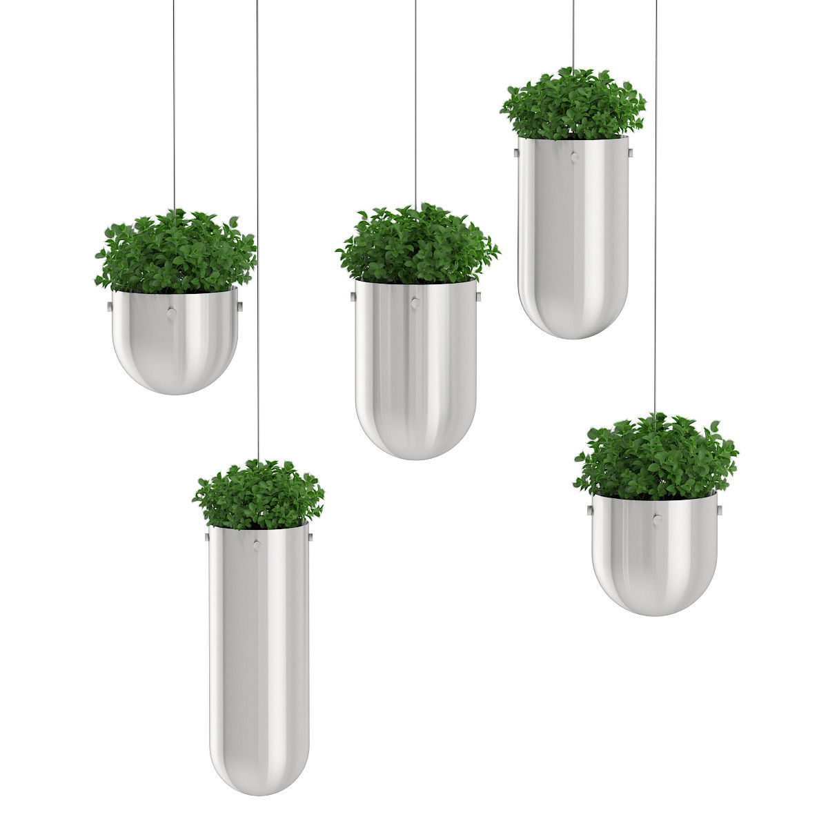 Plants In Metal Hanging Pots 3d Model Max Obj Fbx C4d Mtl