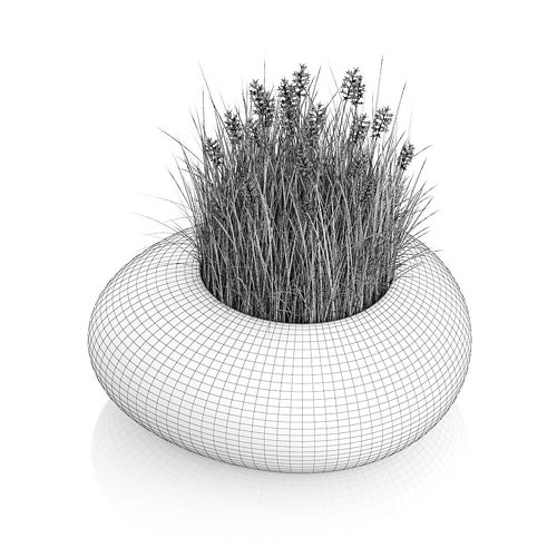 how to make grass and flowers in c4d