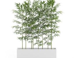 bamboos in large rectangular pot 3d