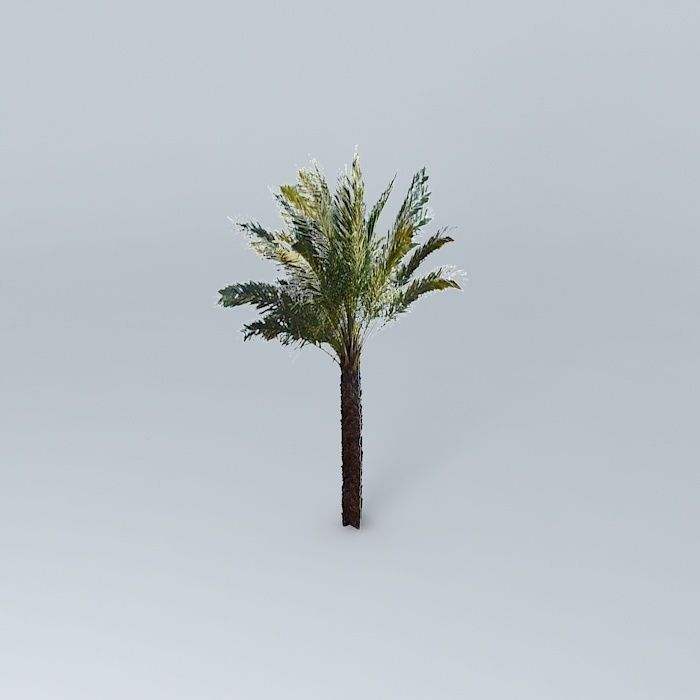 Date Palm Tree 3D model palm | CGTrader