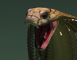 3d model cobra snake rigged 3D Model