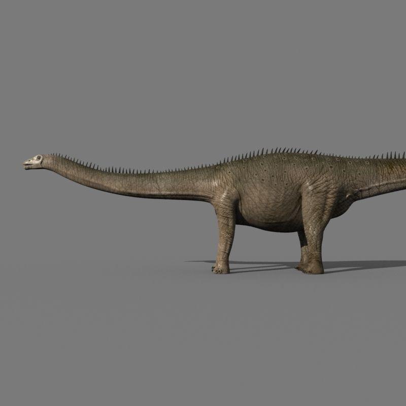 Diplodocus And Kentrosaurus Models: Real Life Diplodocus Dinosaur
