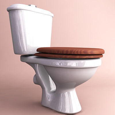 Toilet 3d model obj 3ds fbx c4d - Toilet model ...