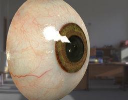 3d model Human eyeball free VR / AR ready