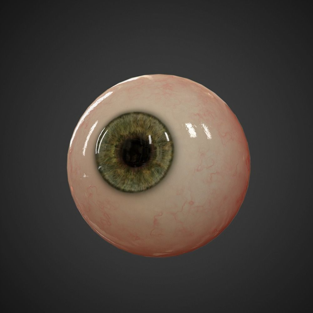 Eyeball free 3d model game ready obj fbx ma mb Free 3d