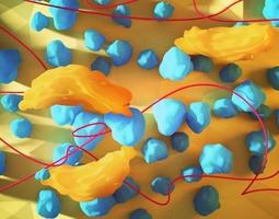 bacteria 3D model