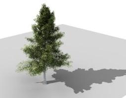 3d mask tree 3