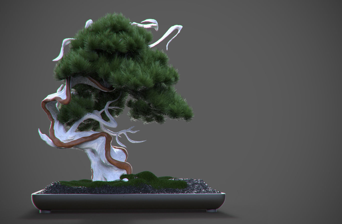 Car Models List >> Bonsai 3D | CGTrader