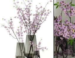 Cherry blossom in Echasse Vases 3D model