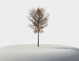 3D Tree element