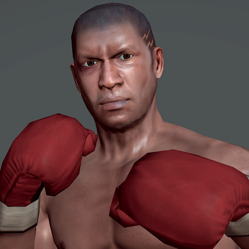 boxing 3D Models