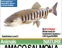 amago salmon a 3d model obj 3ds c4d vue