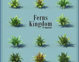 Fern Kingdoms 11 Species tropical 3D model