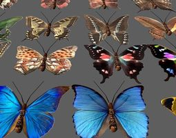 Butterflies Animated lowpoly 3D asset low-poly