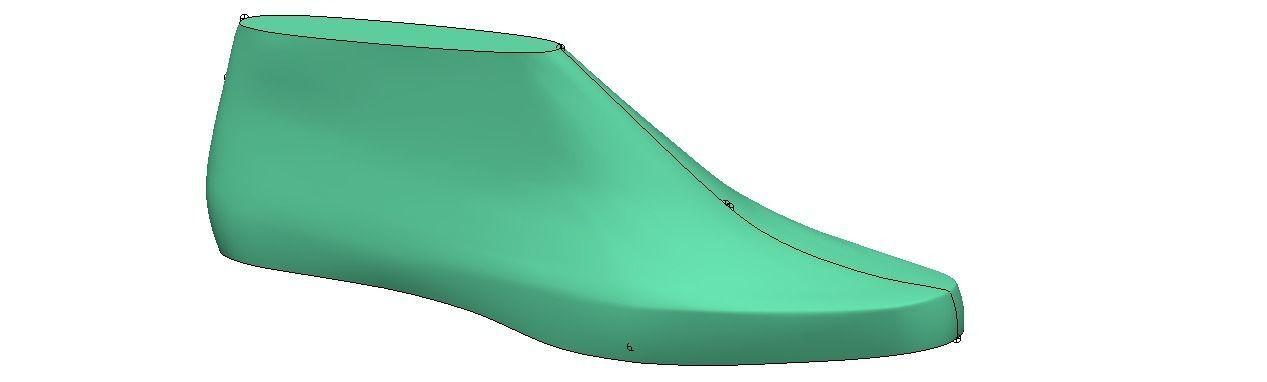 woman shoe last