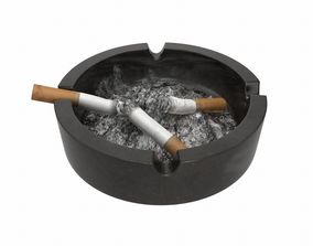 Ashtray Used 3D