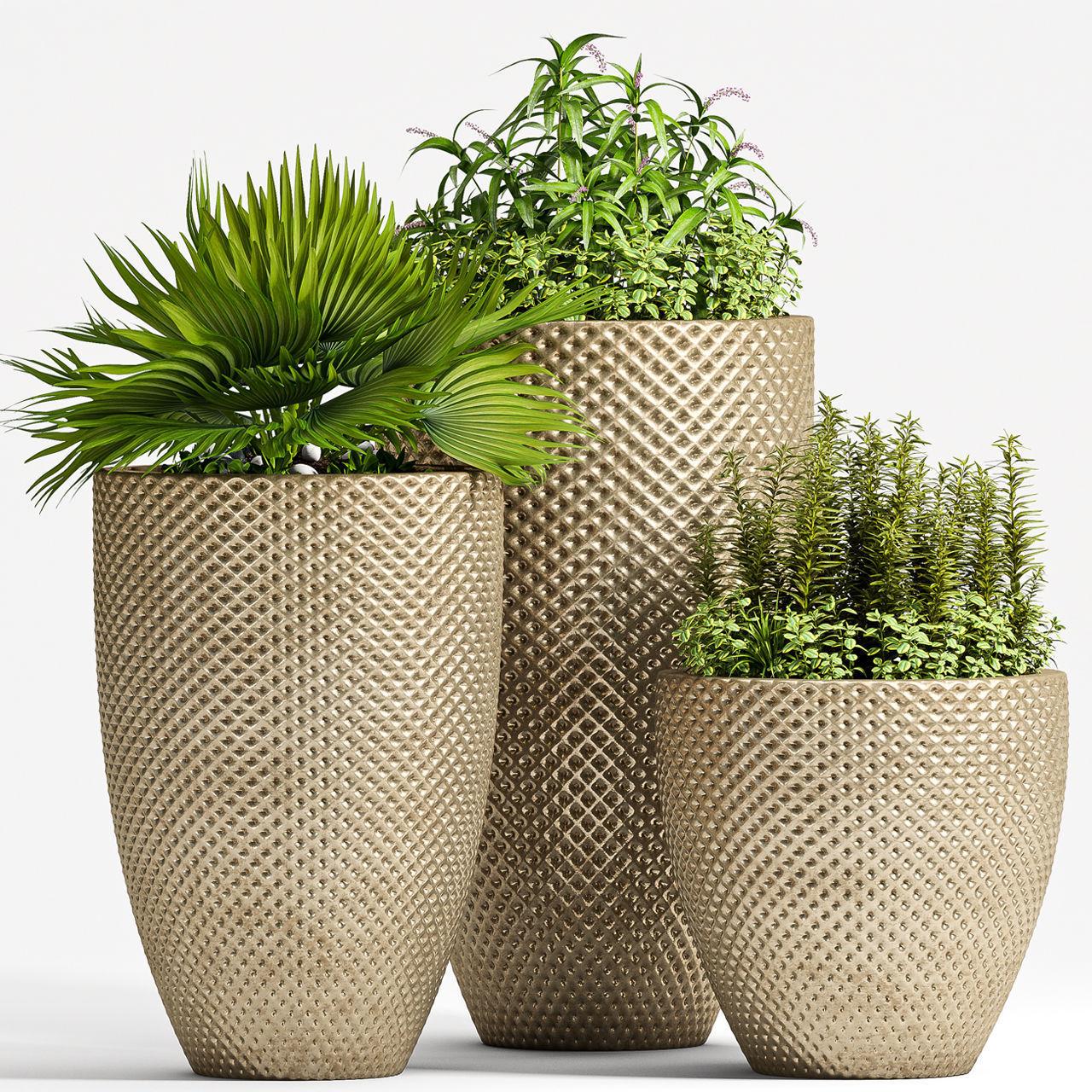 Decorative plant set-62