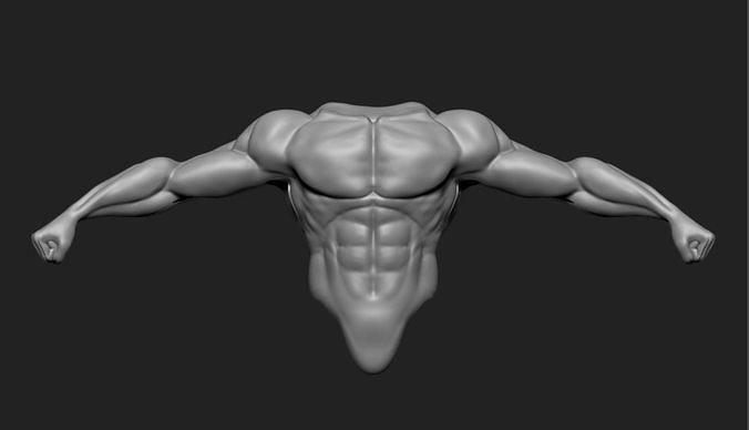 male torso 3d model obj mtl ztl 1