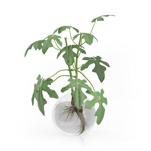 plant tree 07 3d model low-poly max obj mtl 3ds fbx stl dwg 1