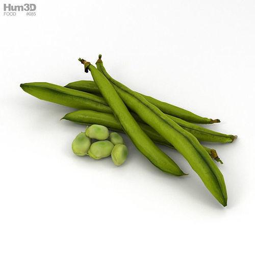 green bean 3d model max obj mtl 3ds fbx c4d lwo lw lws 1