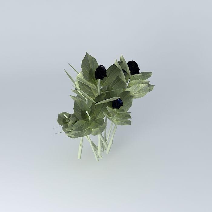 Hortensia 3d hydrangea macrophylla arbre a 3d model for Plante arbuste