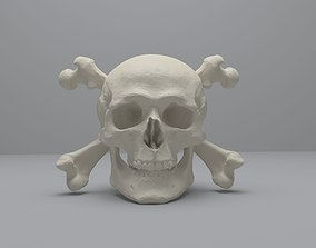 3D model Skull and Cross Bones
