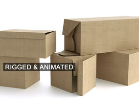 3D Set of 5 Cardboard Boxes - Rigged and