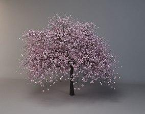 plant flower 3d tree