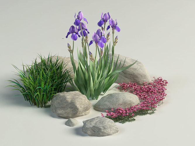 landscape composition iris grass rockfoils 3d model max obj mtl 3ds fbx 1