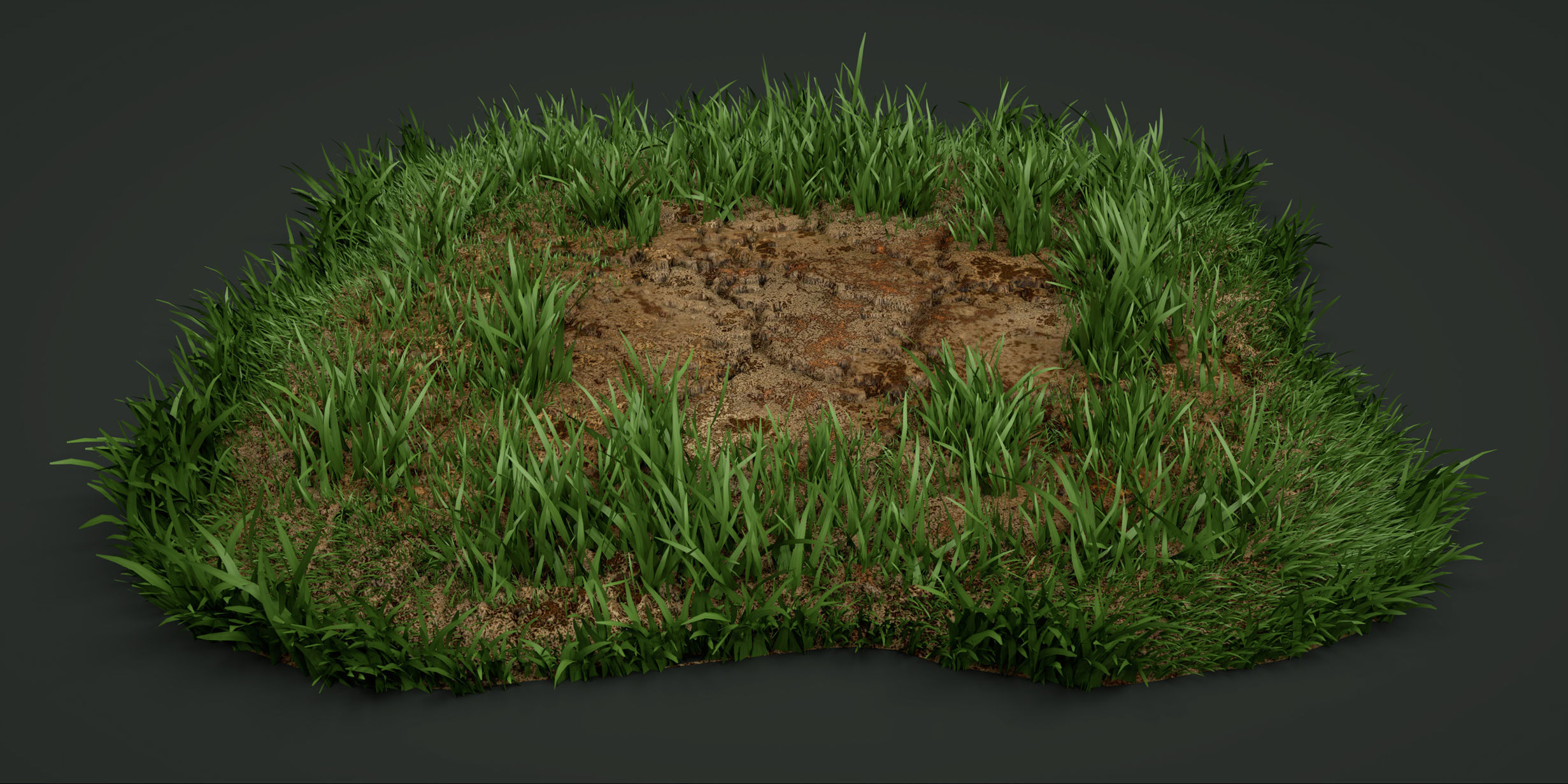 A Detailed Model Of The Grass Texture