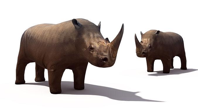 rhino 3d model low-poly max 1