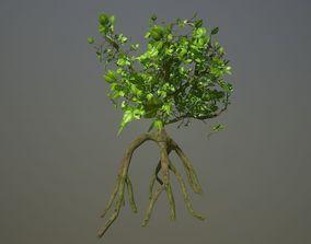 Sci fi mangrove plant environment asset 3D model