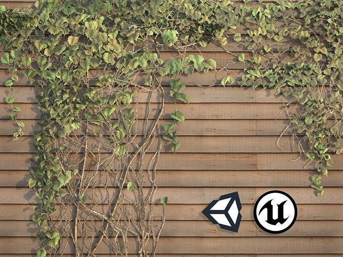Nature Assets - Ivy Collection - Game Ready