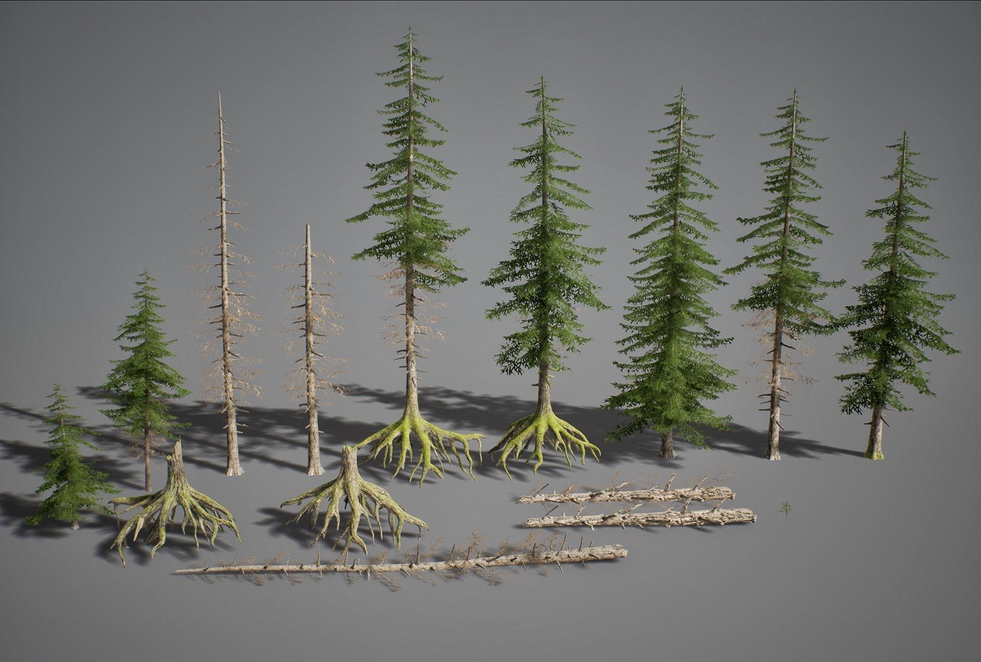 UE4 - Fir Trees