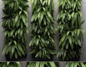 3D model Vertical gardening Fern Wall 3 wall