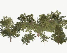 Bush Pack 3D