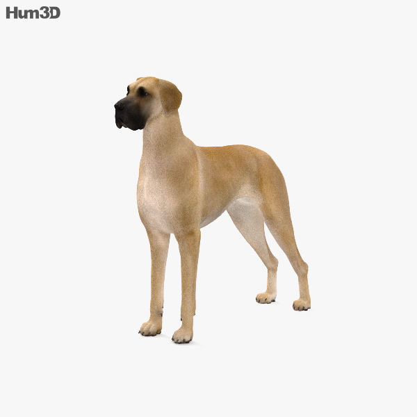 Great Dane HD