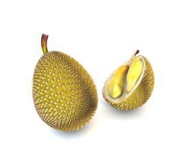 3D asset Durian fruit