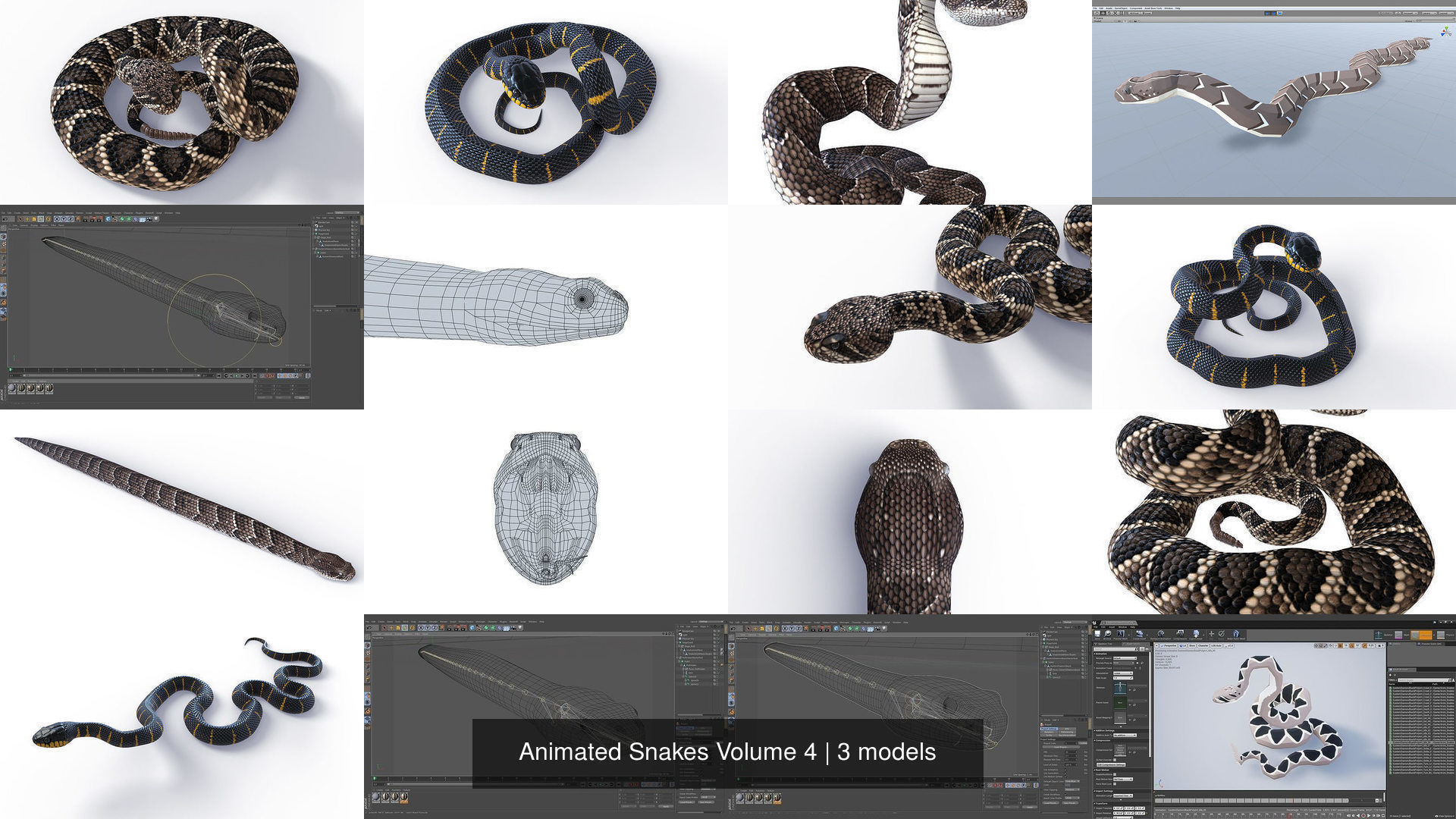 Animated Snakes Volume 4
